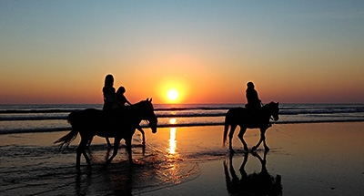 Horse riding along the beach