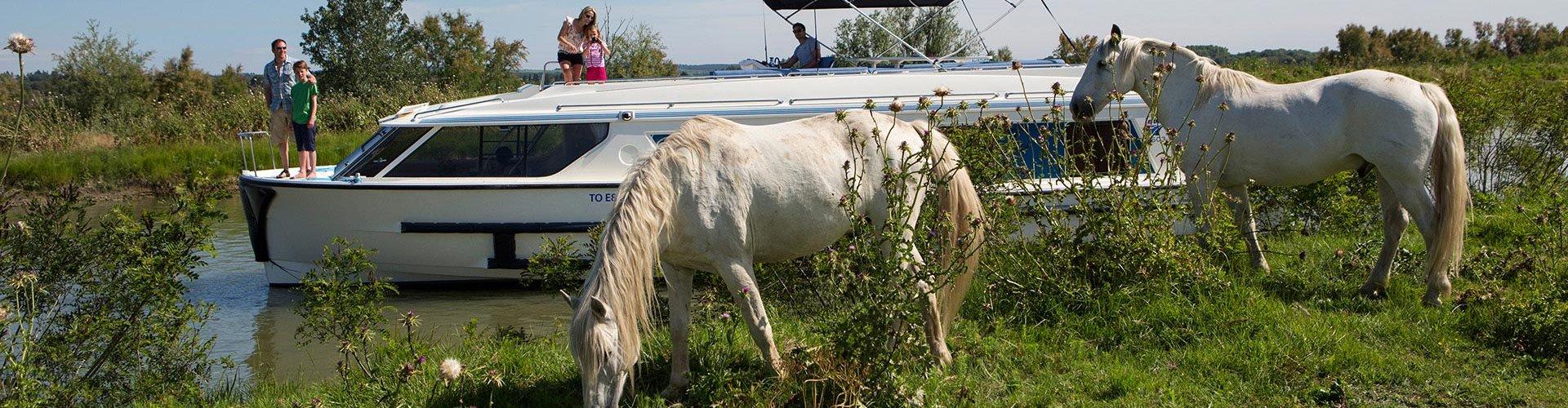 Vacanze in barca per appassionati di equitazione